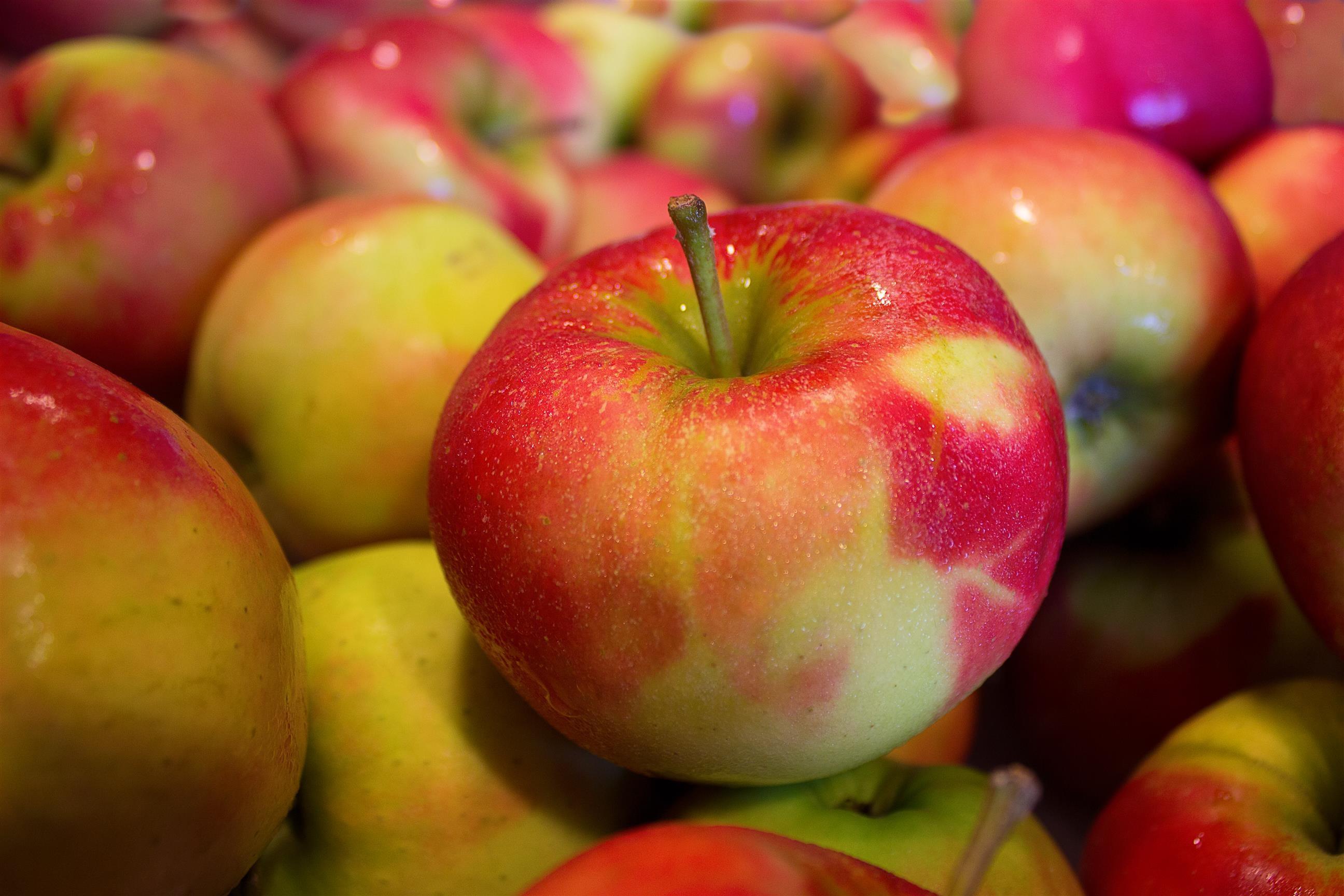 Apfel-Zimt-Kuchen vom Blech